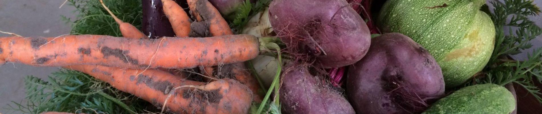 groente.jpg